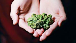 is marijuana a depressant